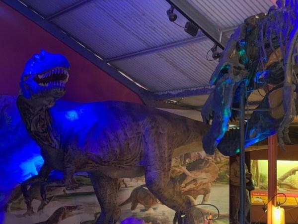 dinosaur-world-dino-shed-13