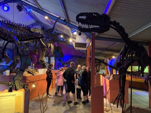 dinosaur-world-dino-shed-9