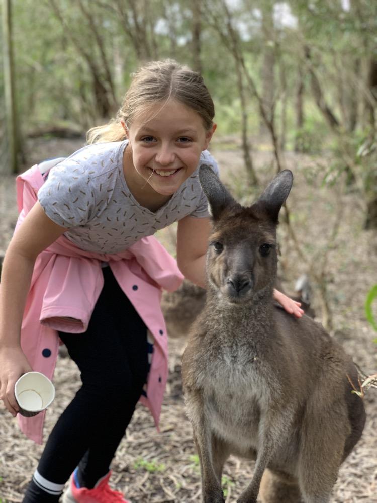 dinosaur-world-kangaroo-park-17