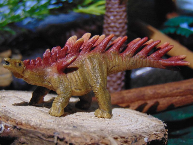 KentrosaurusMini By Schleich Dinosaur Toy Blog