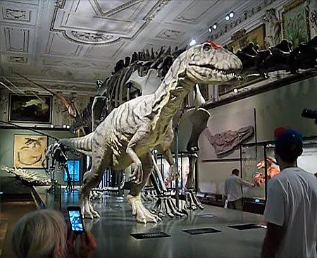 Эпохи в истории Земли: аллозавр