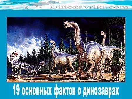 Самые интересные факты о динозаврах: 19 основных