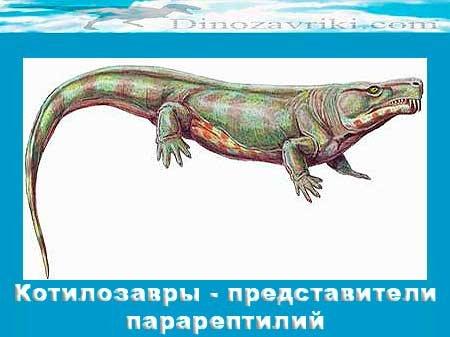 Котилозавры - представители парарептилий
