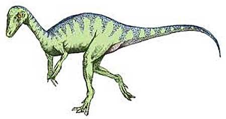 Когда жили динозавры: эораптор