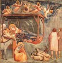 Giotto_nativite
