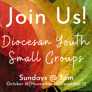 join a Diocesan Youth Small Group (2)
