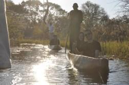 okavango-delta-zimbabwe-339