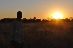 okavango-delta-zimbabwe-408