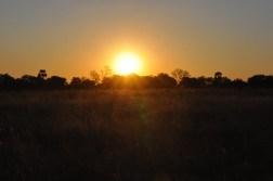 okavango-delta-zimbabwe-411