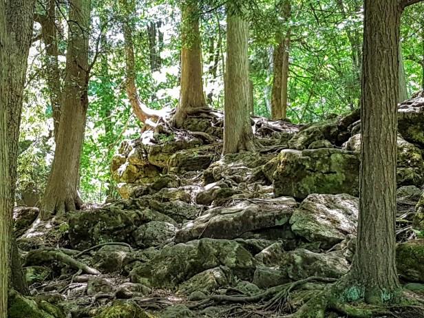 hike to hilton falls
