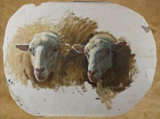 Auguste Bonheur   Studio per due teste di pecora
