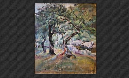 Lea Colliva - Pianaccio, olio su tela, cm. 59,5 x 53