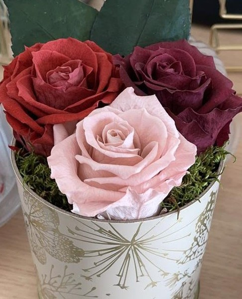 Limited Edition Vintage Roses