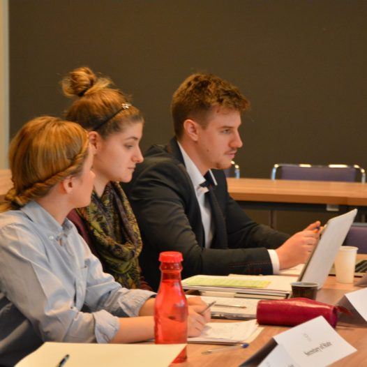 Workshop Session of the Academy of Young Diplomats!