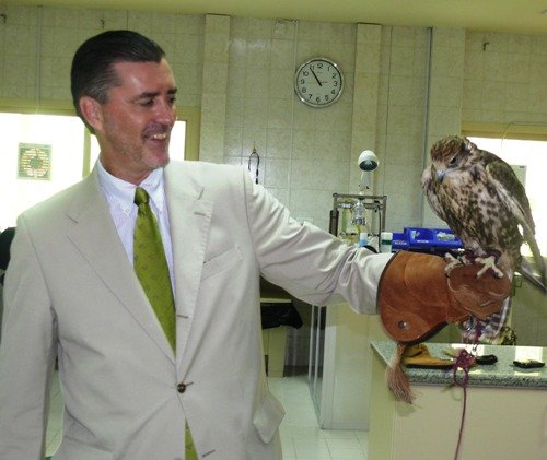 ANIm_Ambo olson with falcon