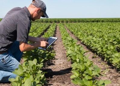 Tecnología y agricultura, una alianza para el siglo XXI