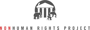 Nonhuman Rights Project is a video productions client of DirectLine Media