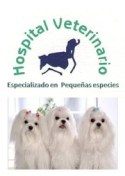 Dr.RubenLaraVeterinario-