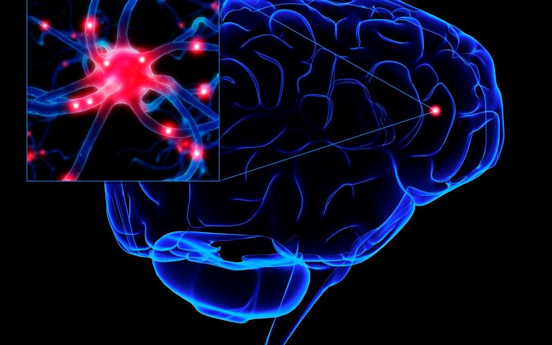 Enfermedades más comunes del sistema nervioso