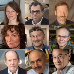 Faces of the NIH grantees receiving the Breakthrough Prize in the Life Sciences (as listed below)