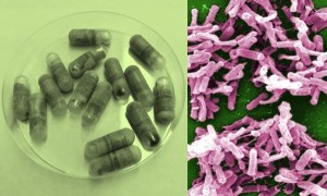 Fecal pills and C diff