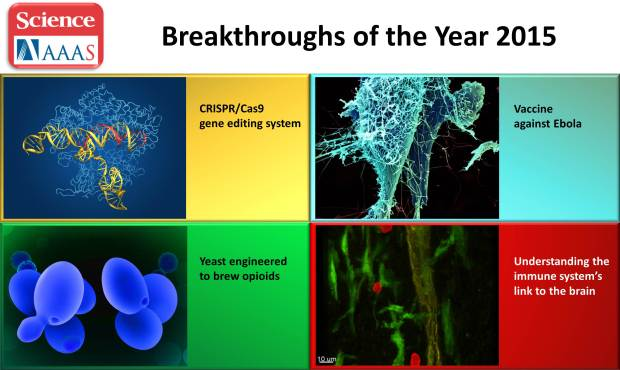 Four NIH-supported science breakthroughs for 2015