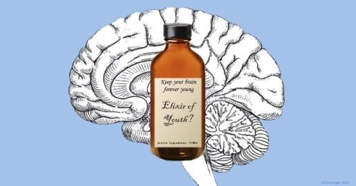 Elixir of youth?