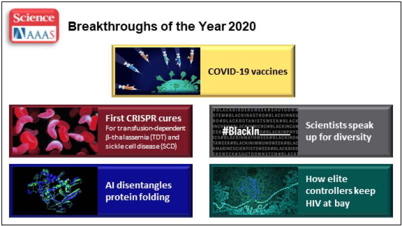 Avance científico del año 2020