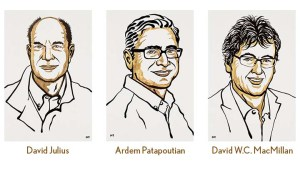 Cartoon illustrations of three men. David Julius, Ardem Patapoutian, and David W.C. MacMillan