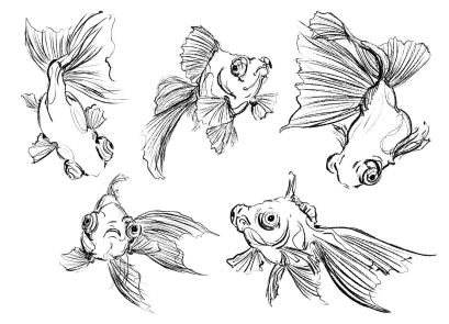nero_fishes_concept