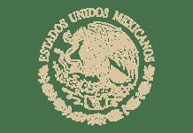 Gobierno de México en vivo, Online