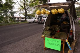 SOBRE|vivientes Vendedores Informales Perfil: Rafael Producto: Cambures y hojas de plátano (para hallacas) Ubicación: Avenida 19 de Abril