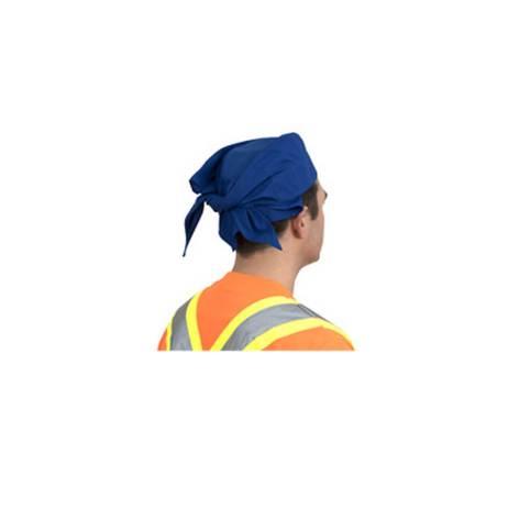 cooling bandana back view blue