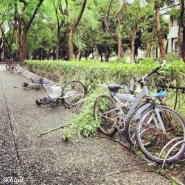 sepeda bertumbangan