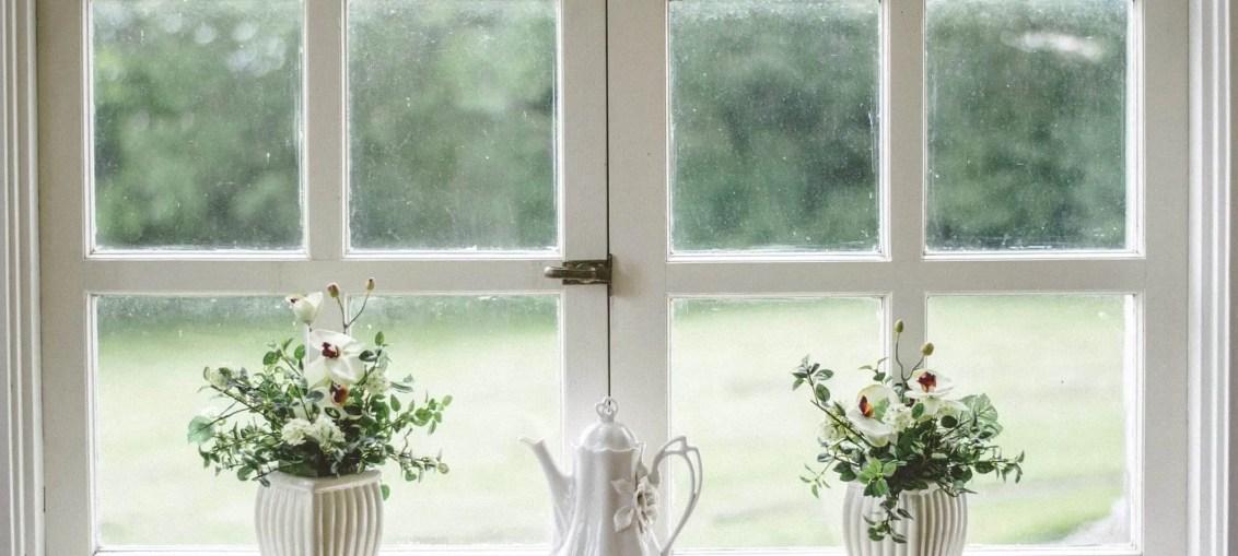 Visual Studio Watch Window