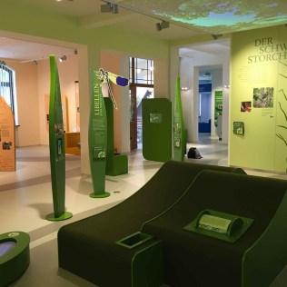 """Dauerausstellung """"Biosphärenreservat Spreewald"""" in Lübbenau"""