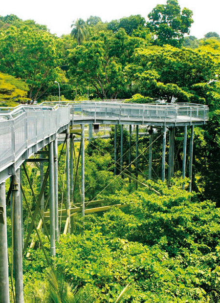 Telok Blangah Hill Park, Singapore / Travelog
