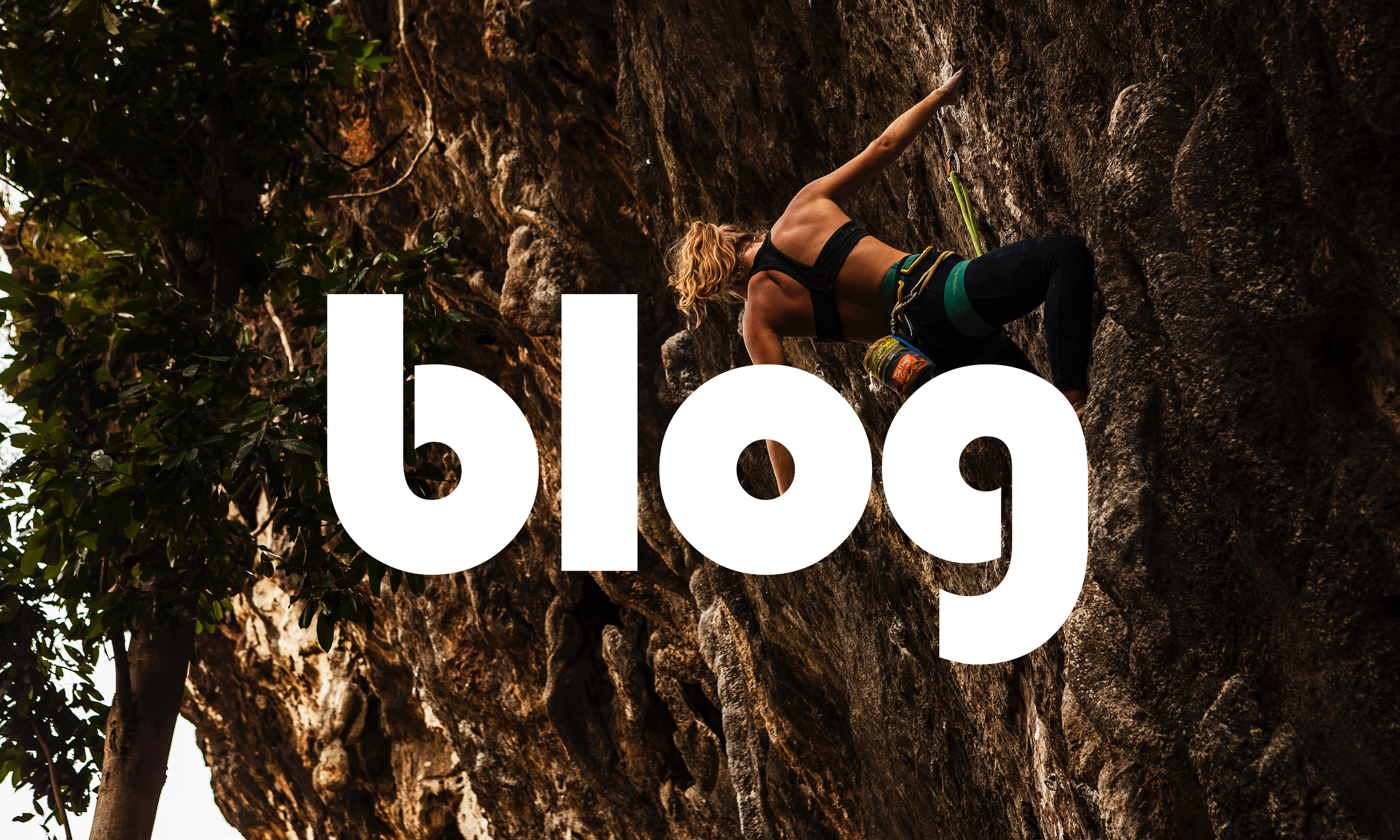 The word 'blog' in front of an image of Zoe hanging off an overhanging sport climb.