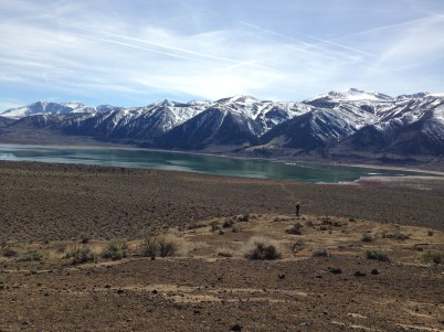 Mono Lake shrunk a lot... the view from the top of Black Point.