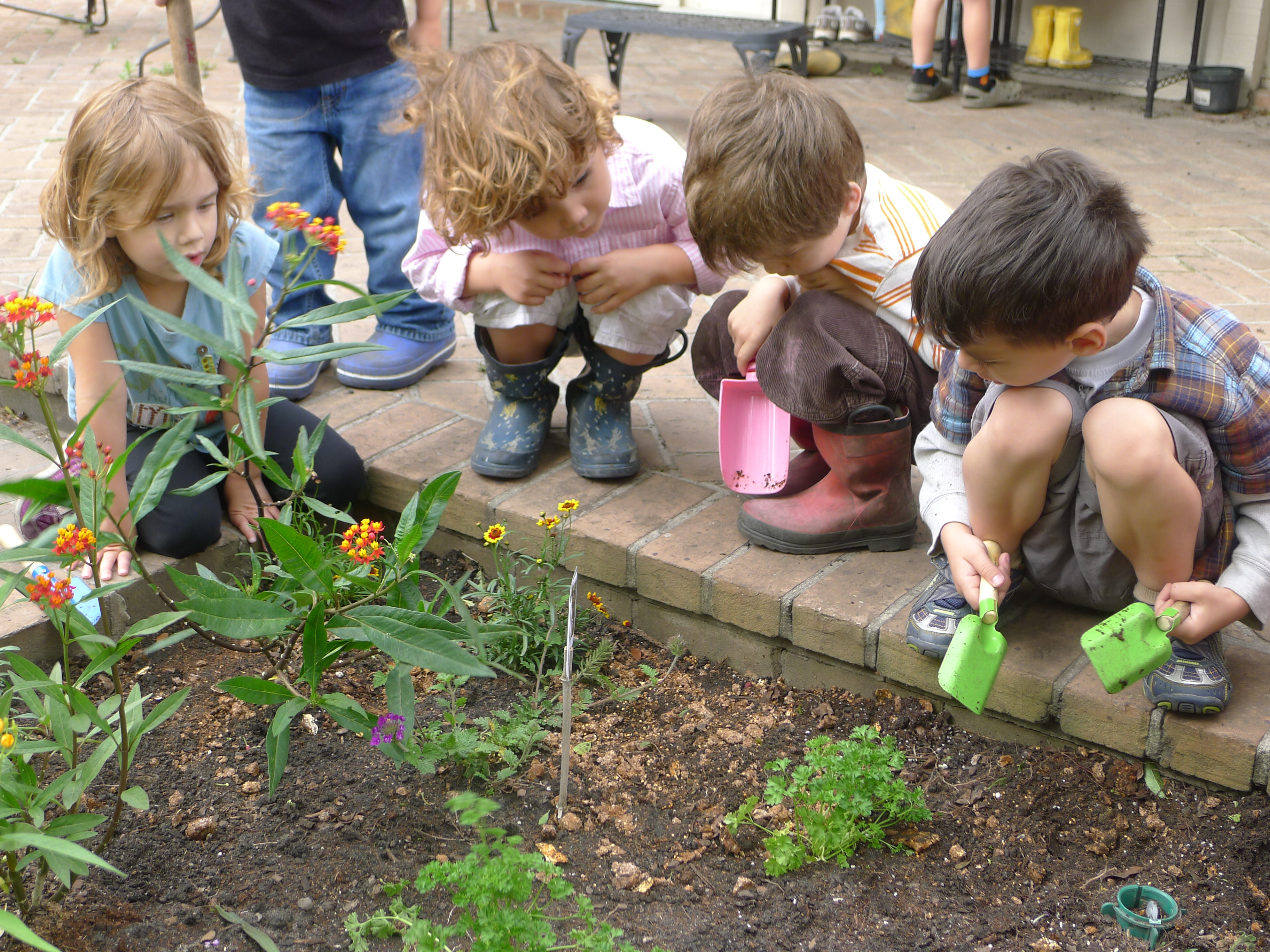 Butterfly Garden At Cathedral Montessori School