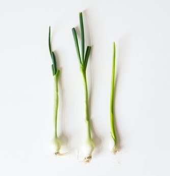 fastest vegetables you can harvest within one month or less