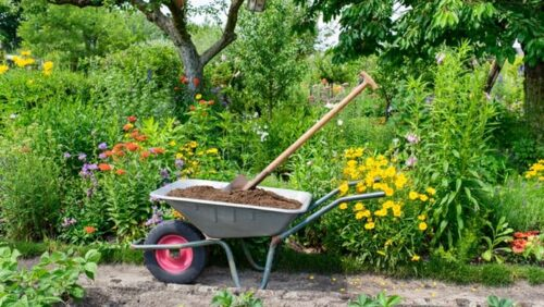 What Are The Different Types Of Wheelbarrows Use For Gardening?