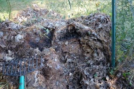 Making leaf mold compost