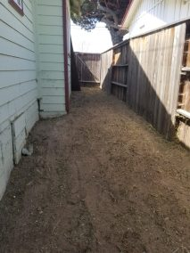 Dog Waste Removal in Pismo Beach, Ca