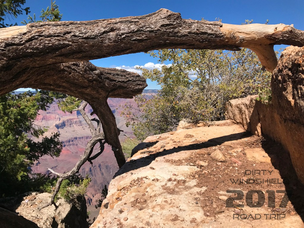 View From Down Low Grand Canyon
