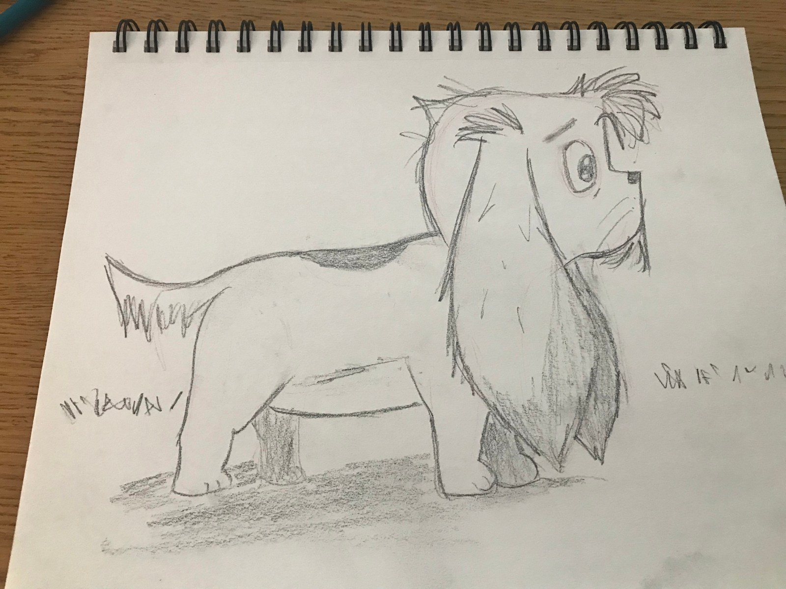 Puppy Sketch Day 8