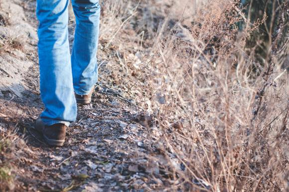 A person's legs and feet are shown walking on a nature trail.