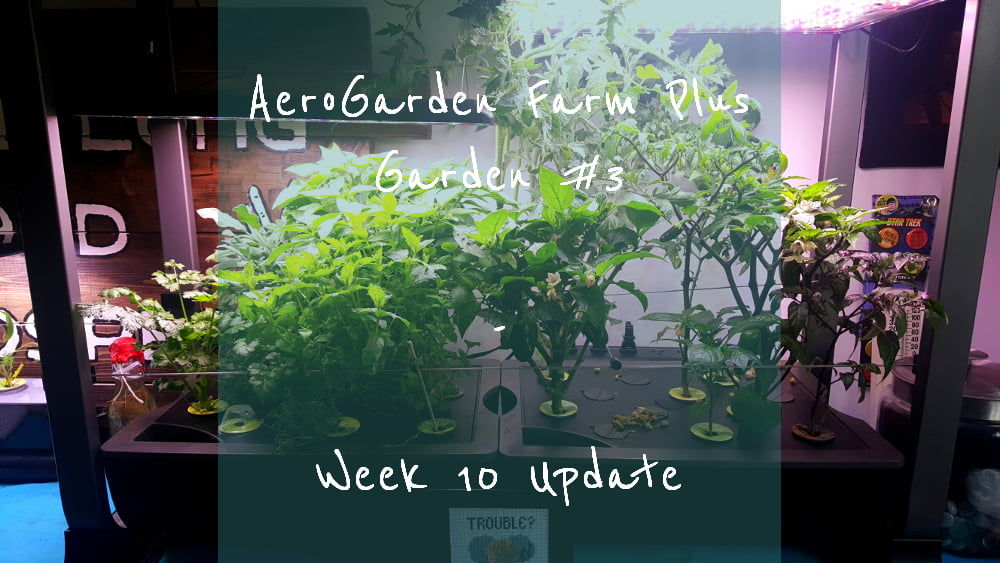AeroGarden Farm Plus Week 10 title card