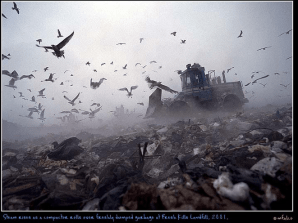 Steam rises as a compactor rolls over freshly dumped garbage at Fresh Kills Landfill, 2001, photo by Michael Falco.