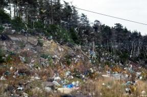 Plastics escaping the landfill.